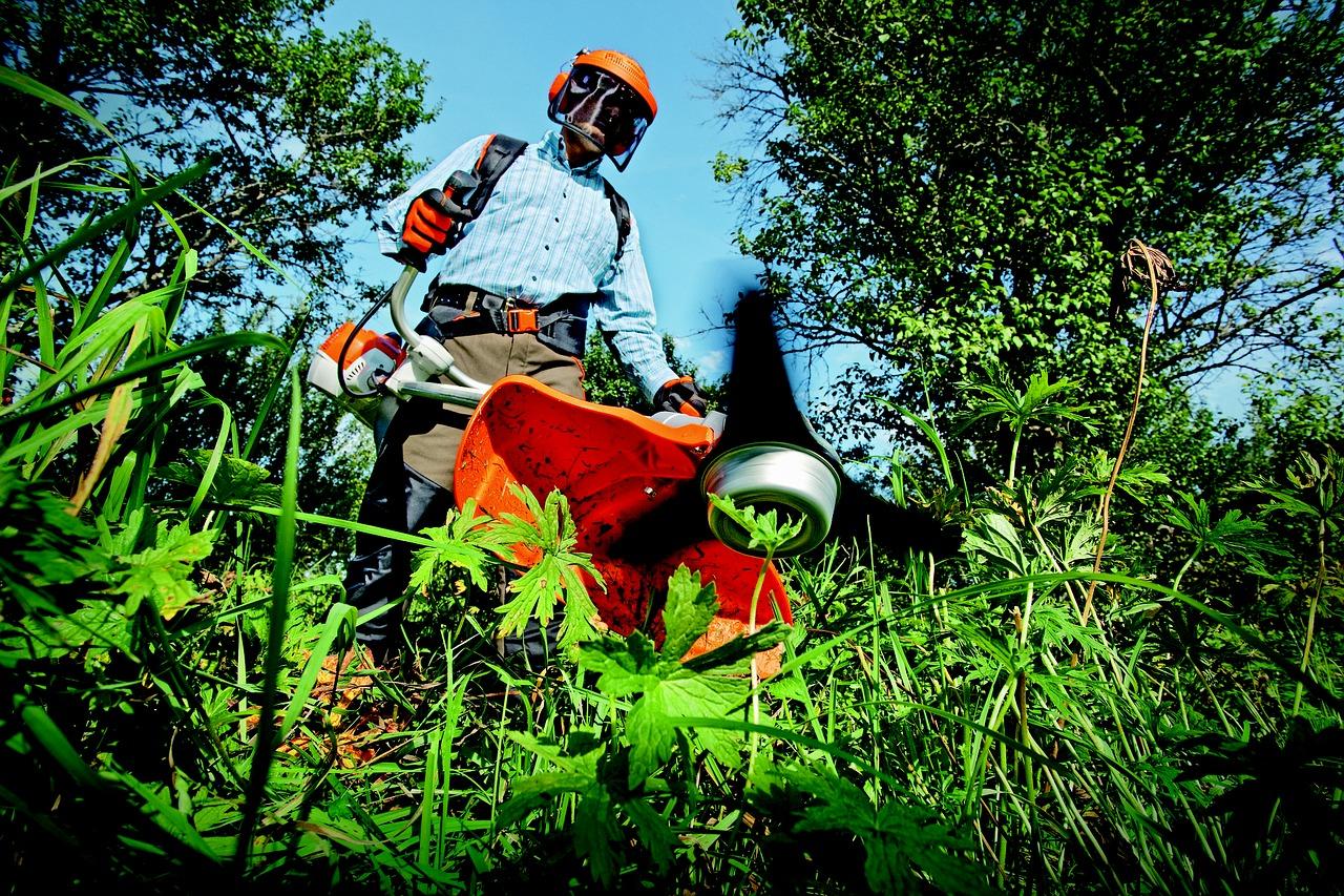 anlægsgartner der rydder buske